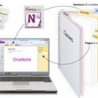 Get Super Organized with Microsoft OneNote with Peggy Duncan, personal productivity expert